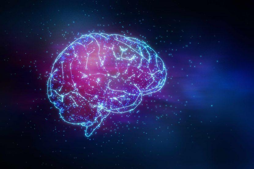 Taller de Neurodiseño de experiencias
